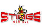 stings_basket